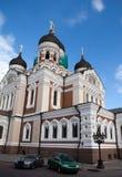 καθεδρικός ναός του Αλεξάνδρου nevsky vane κωμοπόλεων πύργων του Ταλίν Thomas αιθουσών της Εσθονίας πόλεων παλαιός καιρός Στοκ Εικόνες