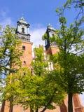 Καθεδρικός ναός του Πόζναν Στοκ φωτογραφίες με δικαίωμα ελεύθερης χρήσης
