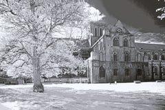 Καθεδρικός ναός του Winchester Στοκ Εικόνες