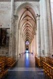 καθεδρικός ναός των Βρυξελλών Στοκ Φωτογραφία