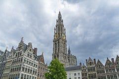 Καθεδρικός ναός, Anvers, Βέλγιο Στοκ Εικόνα
