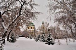Καθεδρικός ναός Cossack του Άγιου Βασίλη Στοκ Εικόνες