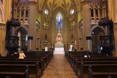 Καθεδρικός ναός Curitiba Στοκ Εικόνα