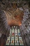 Καθεδρικός ναός Ely Στοκ Φωτογραφίες