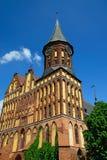 Καθεδρικός ναός Koenigsberg - γοτθικός 14ος αιώνας ναών. Kaliningrad (μέχρι το 1946 Koenigsberg), Ρωσία Στοκ εικόνα με δικαίωμα ελεύθερης χρήσης