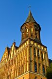 Καθεδρικός ναός Koenigsberg. Kaliningrad (μέχρι το 1946 Koenigsberg), Ρωσία στοκ εικόνα με δικαίωμα ελεύθερης χρήσης