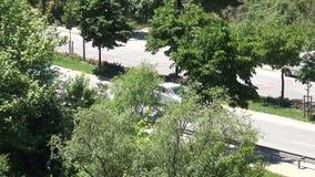 Καθημερινά αυτοκίνητα και δέντρα κυκλοφορίας κοντά στο δρόμο απόθεμα βίντεο