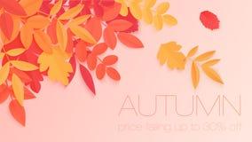 Καθιερώνον τη μόδα έμβλημα πώλησης φθινοπώρου με τα φωτεινά φύλλα φθινοπώρου χρώματος ύφους εγγράφου για το σχέδιο, το ιπτάμενο κ Απεικόνιση αποθεμάτων