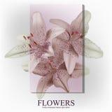 Καθιερώνον τη μόδα έμβλημα με τα λουλούδια για τα σε απευθείας σύνδεση καταστήματα, τις προωθήσεις, τα περιοδικά και τους ιστοχώρ ελεύθερη απεικόνιση δικαιώματος