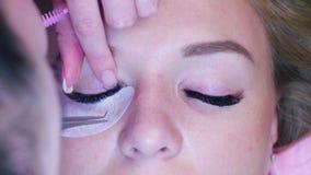 καθολική γυναίκα Ιστού προτύπων σελίδων χαιρετισμού προσώπου καρτών ανασκόπησης Cosmetologist που κτενίζει eyelashes απόθεμα βίντεο