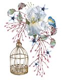 καθολικός Ιστός προτύπων σελίδων ίριδων χαιρετισμού λουλουδιών καρτών ανασκόπησης η ανασκόπηση απομόνωσε το λευκό στοκ εικόνες