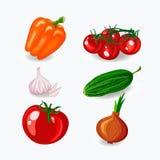 καθορισμένα λαχανικά Επίπεδο σχέδιο Στοκ εικόνα με δικαίωμα ελεύθερης χρήσης