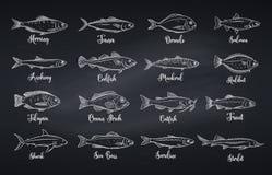 Καθορισμένα διανυσματικά ψάρια διανυσματική απεικόνιση