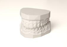 καθορισμένα δόντια Στοκ Εικόνες
