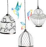 Καθορισμένα ζωγραφισμένα στο χέρι birdcages, πουλιά, φύλλα, ουράνιο τόξο watercolor Στοκ φωτογραφία με δικαίωμα ελεύθερης χρήσης