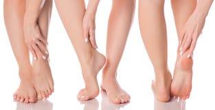 Καθορισμένα θηλυκά πόδια ποδιών από τη διαφορετική υγεία ομορφιάς ιατρικής κατευθύνσεων Στοκ εικόνα με δικαίωμα ελεύθερης χρήσης