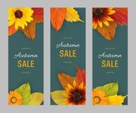 Καθορισμένα κάθετα εμβλήματα φθινοπώρου για την πώληση Στοκ Εικόνες