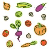καθορισμένα λαχανικά απομονωμένα λαχανικά eps συμπεριλαμβανόμενα αρχείο διανυσματικά λαχανικά επίσης corel σύρετε το διάνυσμα απε Στοκ εικόνα με δικαίωμα ελεύθερης χρήσης