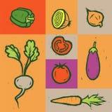καθορισμένα λαχανικά Αφίσα λαχανικών eps συμπεριλαμβανόμενα αρχείο διανυσματικά λαχανικά επίσης corel σύρετε το διάνυσμα απεικόνι Στοκ εικόνα με δικαίωμα ελεύθερης χρήσης