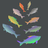 Καθορισμένα ψάρια σε ένα σκοτεινό υπόβαθρο διανυσματική απεικόνιση