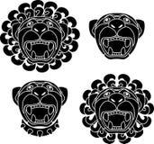 καθορισμένα snouts λιονταριών Στοκ Φωτογραφίες