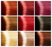 καθορισμένες αποχρώσεις τριχώματος χρωμάτων Στοκ Εικόνα