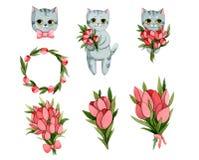 Καθορισμένες γάτες με τα λουλούδια Ανθοδέσμες και στεφάνια των τουλιπών απεικόνιση αποθεμάτων