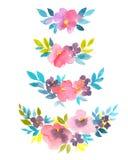 Καθορισμένες μοντέρνες floral απεικονίσεις watercolor Συρμένο χέρι φυσικό ντεκόρ απεικόνιση αποθεμάτων