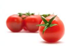 καθορισμένες ντομάτες Στοκ εικόνες με δικαίωμα ελεύθερης χρήσης
