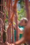 Καθορισμένη γυναίκα που αναρριχείται σε ένα δίχτυ κατά τη διάρκεια της κατάρτισης σειράς μαθημάτων εμποδίων Στοκ εικόνες με δικαίωμα ελεύθερης χρήσης