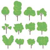 Καθορισμένη επίπεδη διανυσματική απεικόνιση δέντρων πλαισιωμένο πράσινο οριζόντια φυτό φωτογραφιών Στοκ Εικόνες