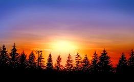 καθορισμένος ήλιος Στοκ Φωτογραφίες