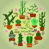 καθορισμένος ακανθωτός succulent τύπος φυτών κάκτων Απεικόνιση αποθεμάτων