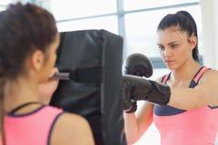 Καθορισμένος θηλυκός μπόξερ που στρέφεται σε την που εκπαιδεύει Στοκ φωτογραφίες με δικαίωμα ελεύθερης χρήσης