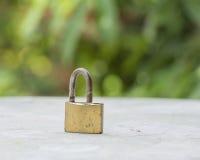 καθορισμένος διανυσματικός Ιστός κλειδωμάτων εικονιδίων Στοκ Φωτογραφίες