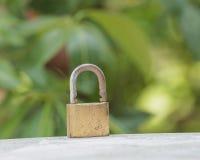 καθορισμένος διανυσματικός Ιστός κλειδωμάτων εικονιδίων Στοκ Φωτογραφία