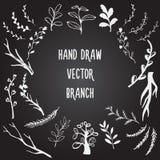 Καθορισμένος συρμένος χέρι κλάδος Στοκ εικόνα με δικαίωμα ελεύθερης χρήσης
