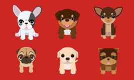 Καθορισμένος χαριτωμένος λίγο κατοικίδιο ζώο κουταβιών, γραφικό, σκυλί, απεικόνιση, κουτάβι, ζώο απεικόνιση αποθεμάτων