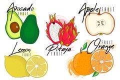Καθορισμένο διάνυσμα των ζωηρόχρωμων εικονιδίων φρούτων βιταμινών κινούμενων σχεδίων: μήλο, λεμόνι, pitaya, αβοκάντο, πορτοκάλι,  Στοκ Εικόνα