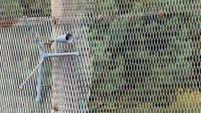 Καθορισμένο πυροβόλο όπλο στα προηγούμενα εσωτερικά γερμανικά σύνορα Στοκ φωτογραφία με δικαίωμα ελεύθερης χρήσης