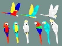Καθορισμένο ύφος περικοπών εγγράφου παπαγάλων ελεύθερη απεικόνιση δικαιώματος