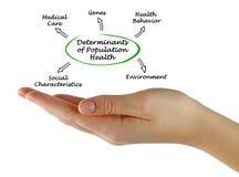 Καθοριστικοί παράγοντες της υγείας πληθυσμού διανυσματική απεικόνιση