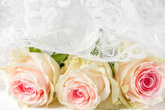 καθολικός γάμος Ιστού προτύπων σελίδων χαιρετισμού καρτών ανασκόπησης Στοκ Εικόνα