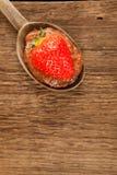 καθολικός Ιστός προτύπων φραουλών σελίδων μαρμελάδας χαιρετισμού καρτών ανασκόπησης Στοκ Εικόνες