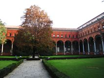 Καθολικό πανεπιστήμιο της ιερής καρδιάς Στοκ εικόνες με δικαίωμα ελεύθερης χρήσης