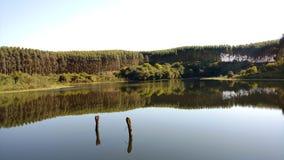 Καθρέφτης νερού Στοκ Φωτογραφίες