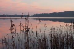 Καθρέφτης πρωινού Στοκ εικόνα με δικαίωμα ελεύθερης χρήσης