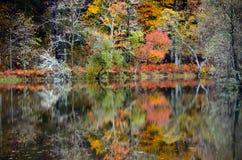 Καθρέφτης των χρωμάτων Στοκ Εικόνα