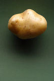 Καινούρια πατάτα Στοκ φωτογραφίες με δικαίωμα ελεύθερης χρήσης