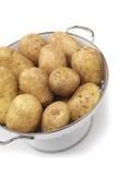 Καινούρια πατάτα Στοκ φωτογραφία με δικαίωμα ελεύθερης χρήσης
